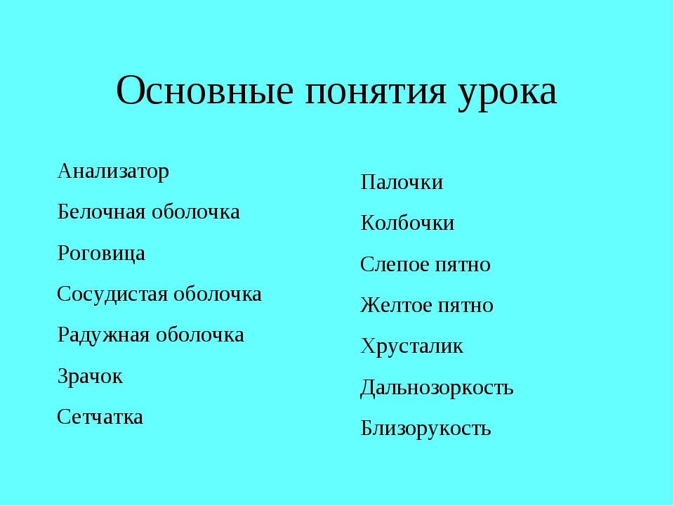 Основные понятия урока Анализатор Белочная оболочка Роговица Сосудистая оболо...