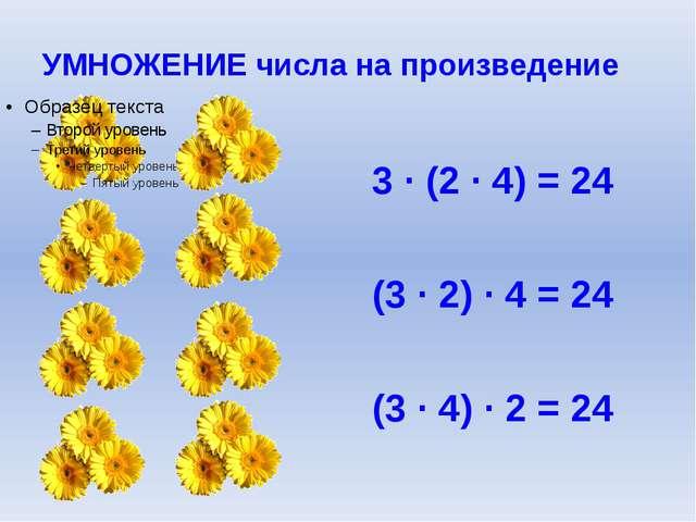 УМНОЖЕНИЕ числа на произведение 3 ∙ (2 ∙ 4) = 24 (3 ∙ 2) ∙ 4 = 24 (3 ∙ 4) ∙ 2...