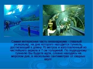 Самая интересная часть океанариума - главный резервуар, на дне которого наход