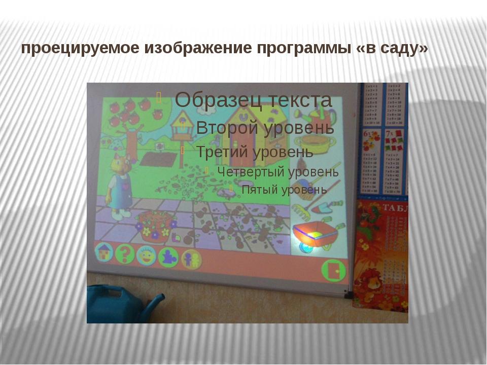 проецируемое изображение программы «в саду»