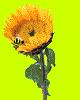hello_html_6e0e4f75.png