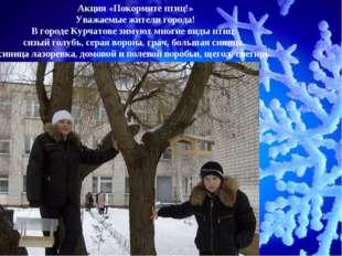 Акция «Покормите птиц!» Уважаемые жители города! В городе Курчатове зимуют мн