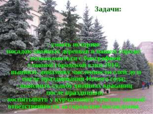- узнать историю посадок хвойных деревьев в нашем городе; - познакомиться с б