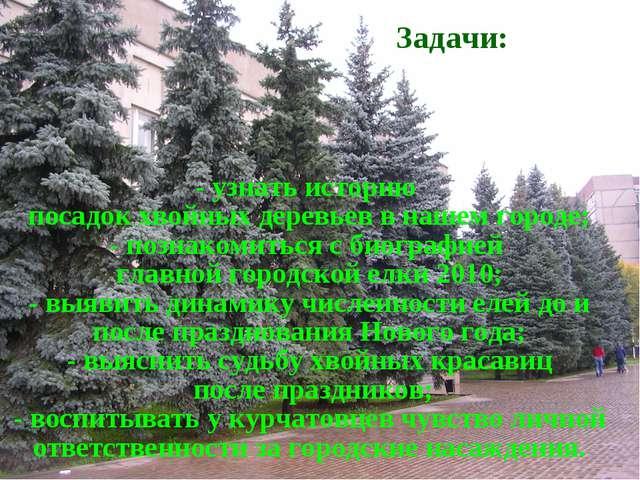 - узнать историю посадок хвойных деревьев в нашем городе; - познакомиться с б...