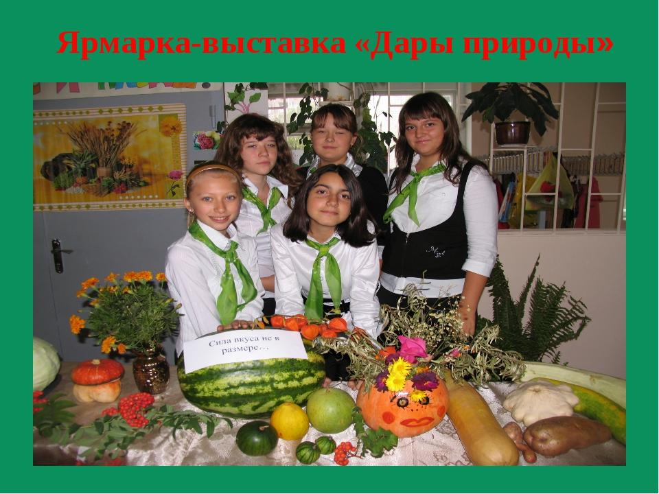 Ярмарка-выставка «Дары природы»