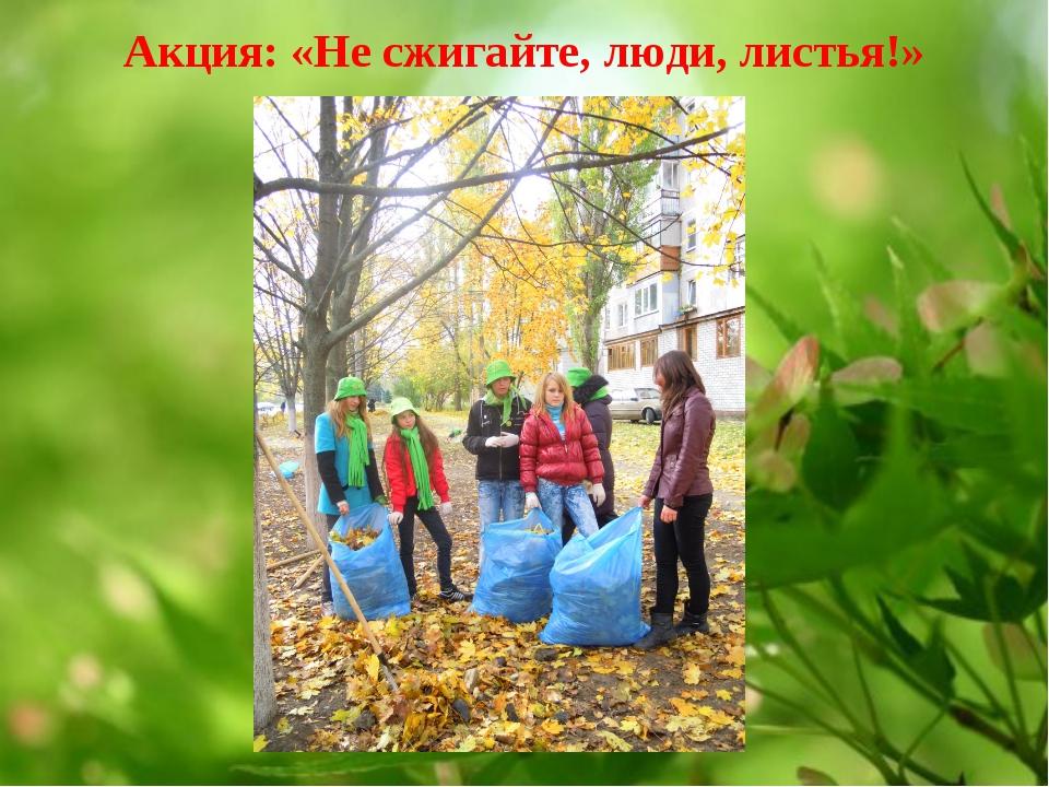 Акция: «Не сжигайте, люди, листья!»