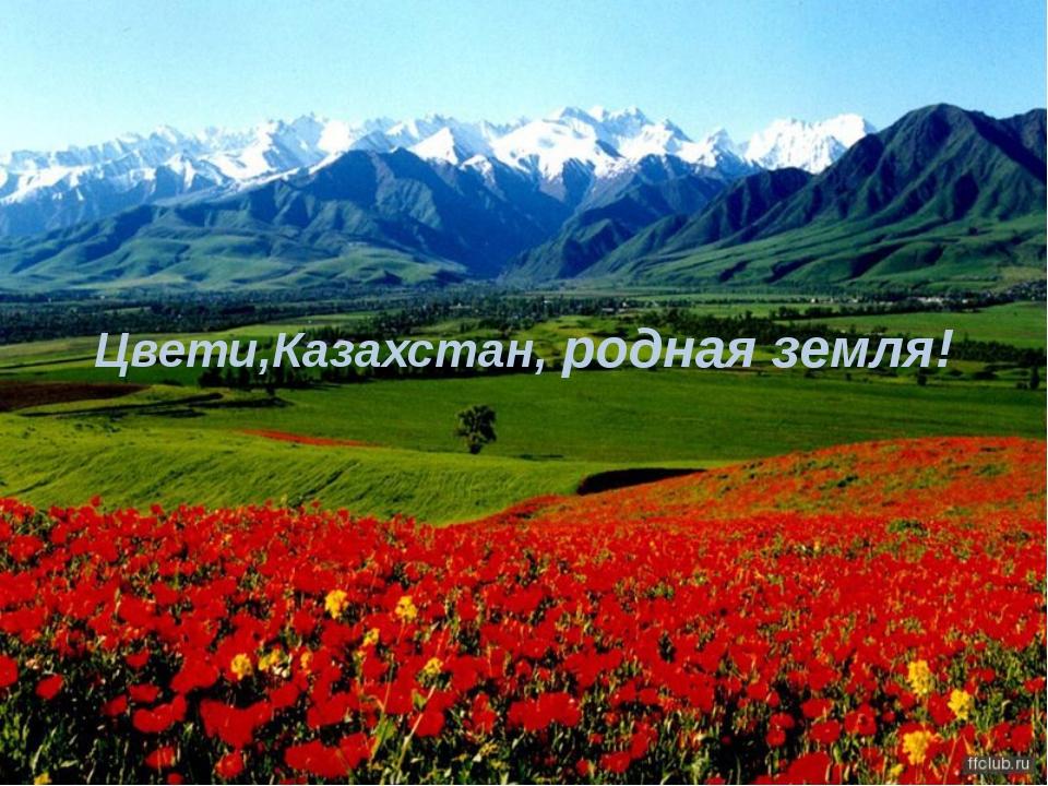 Цвети,Казахстан, родная земля!