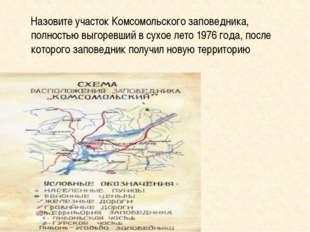 Назовите участок Комсомольского заповедника, полностью выгоревший в сухое лет