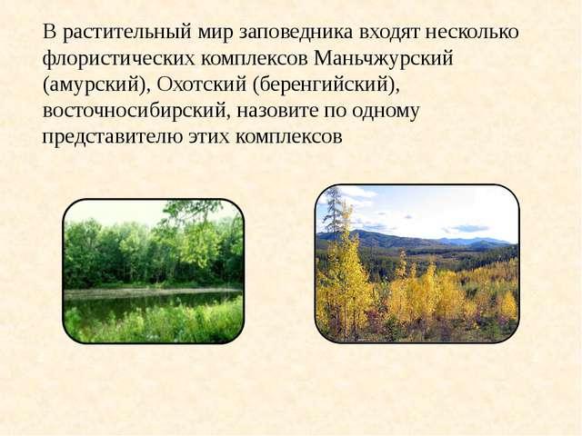 В растительный мир заповедника входят несколько флористических комплексов Ман...