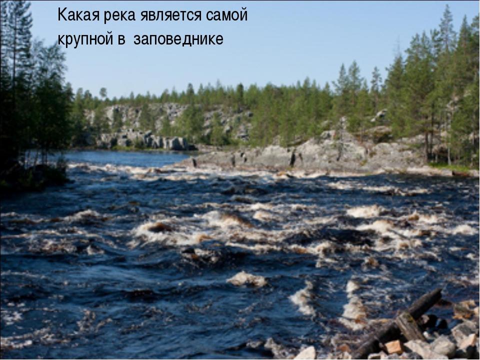 Какая река является самой крупной в заповеднике