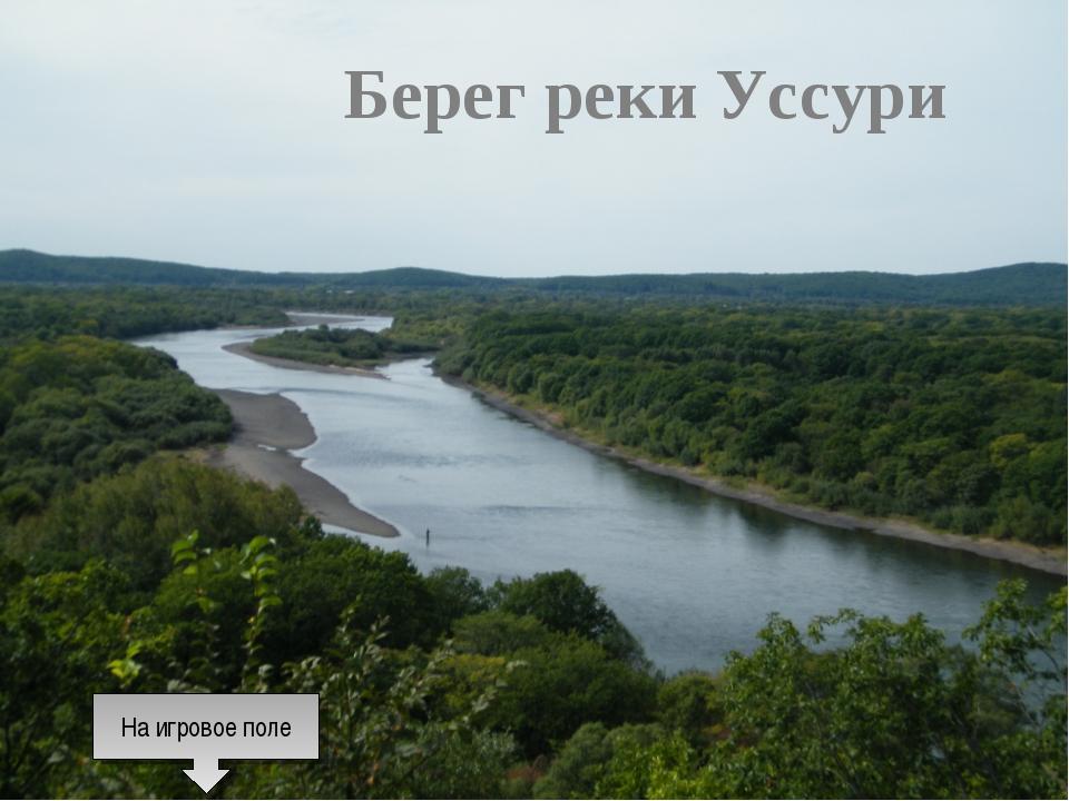 Берег реки Уссури На игровое поле