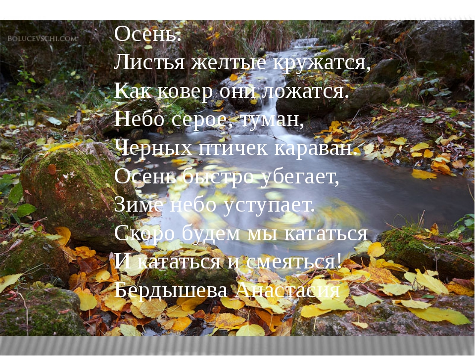 Осень. Листья желтые кружатся, Как ковер они ложатся. Небо серое, туман, Черн...