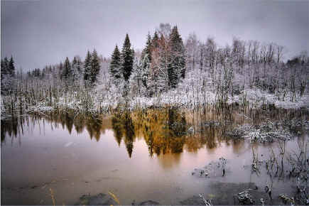 http://festival.1september.ru/articles/580582/Image3015.jpg