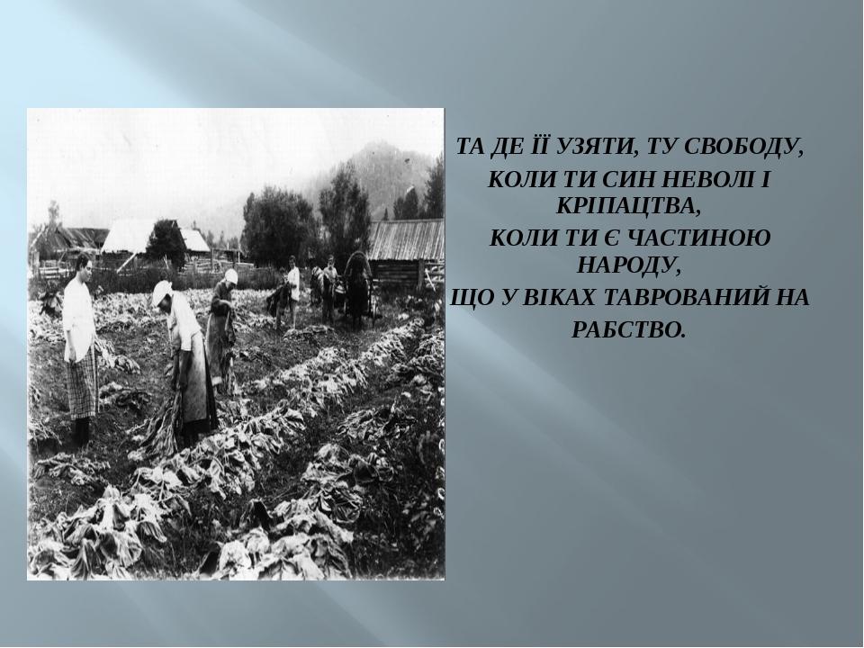 ТА ДЕ ЇЇ УЗЯТИ, ТУ СВОБОДУ, КОЛИ ТИ СИН НЕВОЛІ І КРІПАЦТВА, КОЛИ ТИ Є ЧАСТИНО...