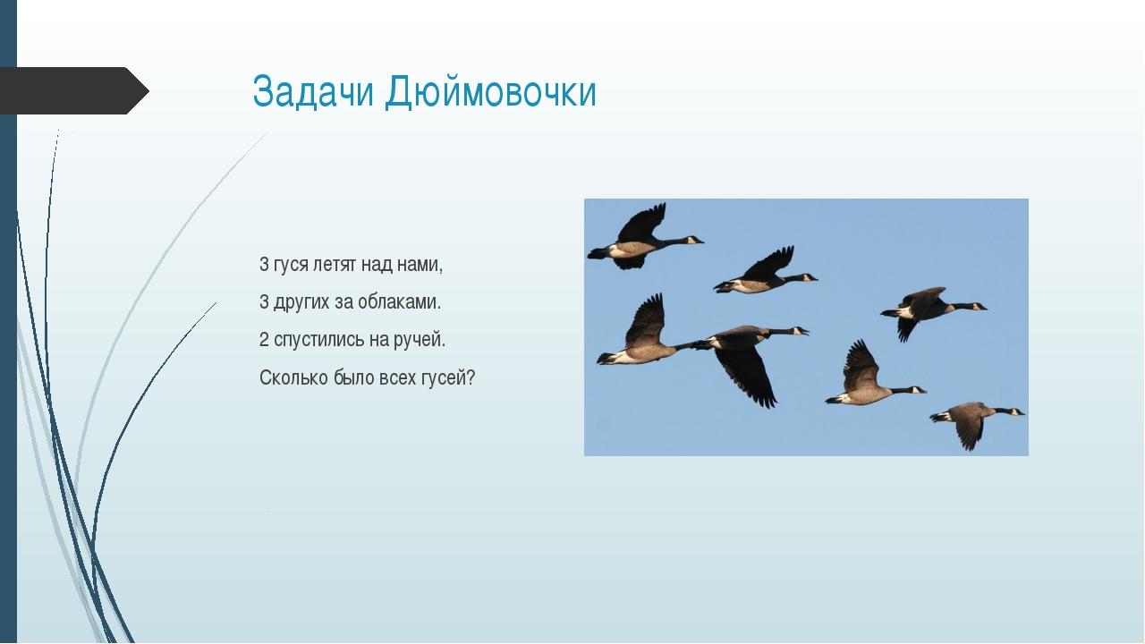 Задачи Дюймовочки 3 гуся летят над нами, 3 других за облаками. 2 спустились н...