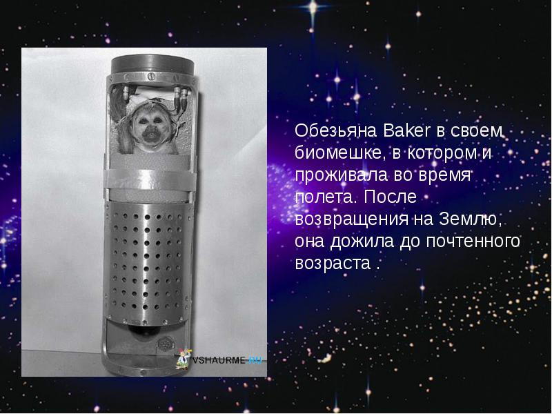 http://rpp.nashaucheba.ru/pars_docs/refs/166/165084/img27.jpg