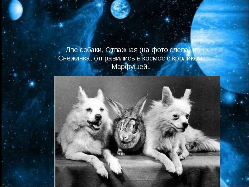 http://rpp.nashaucheba.ru/pars_docs/refs/166/165084/img24.jpg