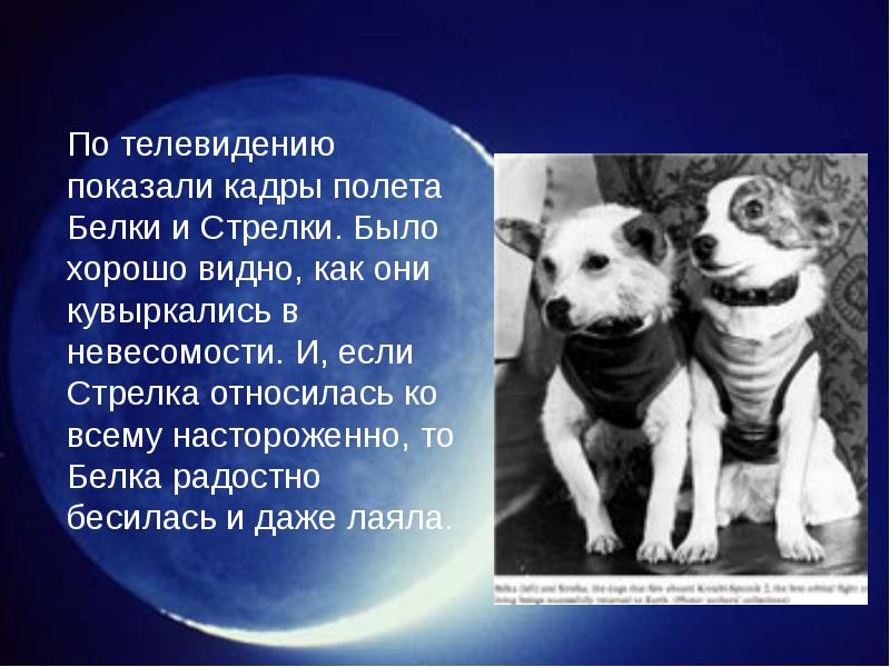 http://rpp.nashaucheba.ru/pars_docs/refs/166/165084/img14.jpg