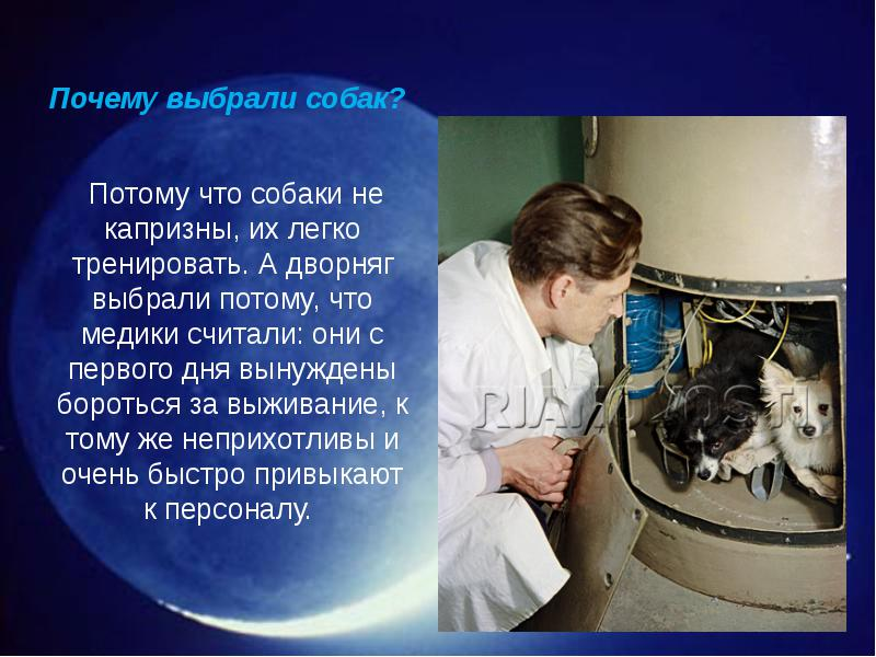 http://rpp.nashaucheba.ru/pars_docs/refs/166/165084/img5.jpg