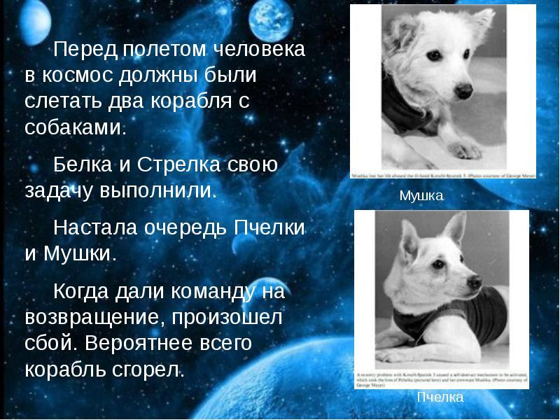 http://rpp.nashaucheba.ru/pars_docs/refs/166/165084/img17.jpg