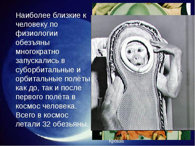 http://rpp.nashaucheba.ru/pars_docs/refs/166/165084/img26.jpg