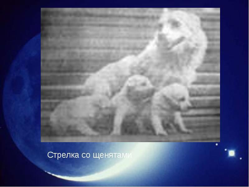 http://rpp.nashaucheba.ru/pars_docs/refs/166/165084/img16.jpg