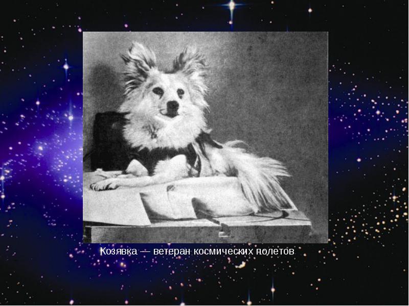 http://rpp.nashaucheba.ru/pars_docs/refs/166/165084/img25.jpg