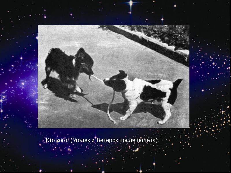 http://rpp.nashaucheba.ru/pars_docs/refs/166/165084/img23.jpg