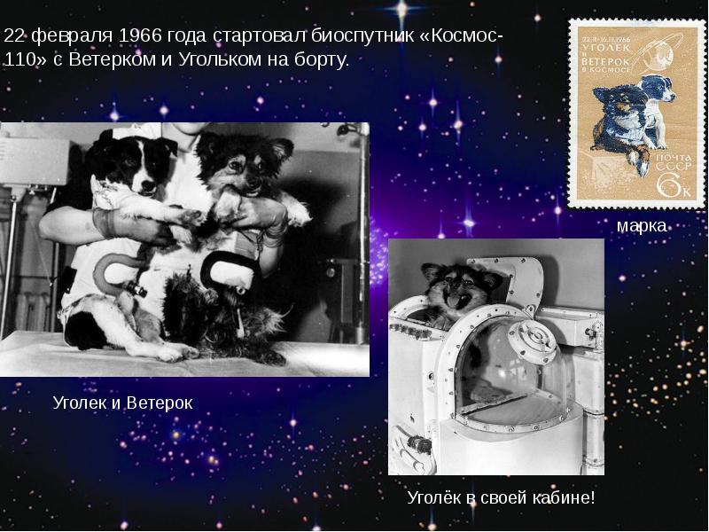 http://rpp.nashaucheba.ru/pars_docs/refs/166/165084/img21.jpg