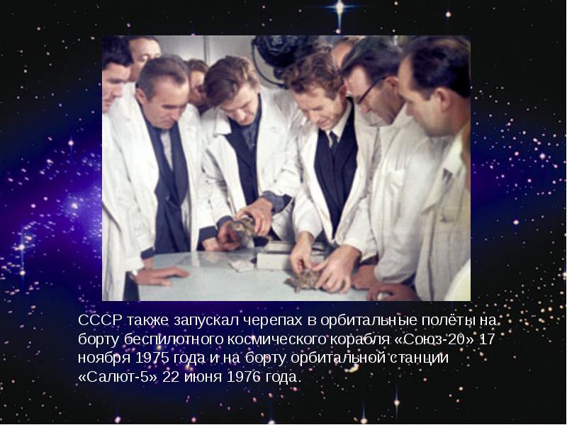 http://rpp.nashaucheba.ru/pars_docs/refs/166/165084/img29.jpg