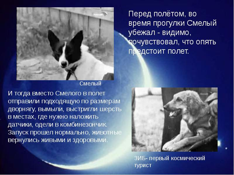 http://rpp.nashaucheba.ru/pars_docs/refs/166/165084/img7.jpg