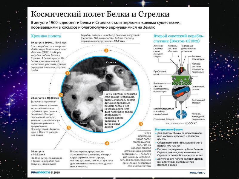 http://rpp.nashaucheba.ru/pars_docs/refs/166/165084/img15.jpg