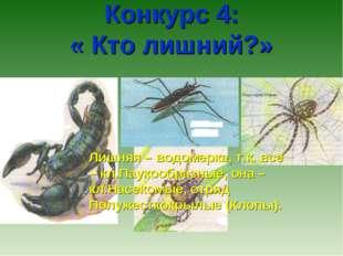 Конкурс 4: « Кто лишний?» Лишняя – водомерка, т.к. все – кл.Паукообразные, о