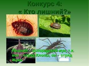 Конкурс 4: « Кто лишний?» Лишний – колорадский жук, т.к. все – отряд Клопы,