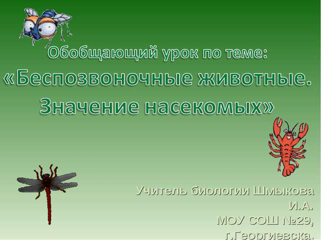 Учитель биологии Шмыкова И.А. МОУ СОШ №29, г.Георгиевска, Ставропольского края.