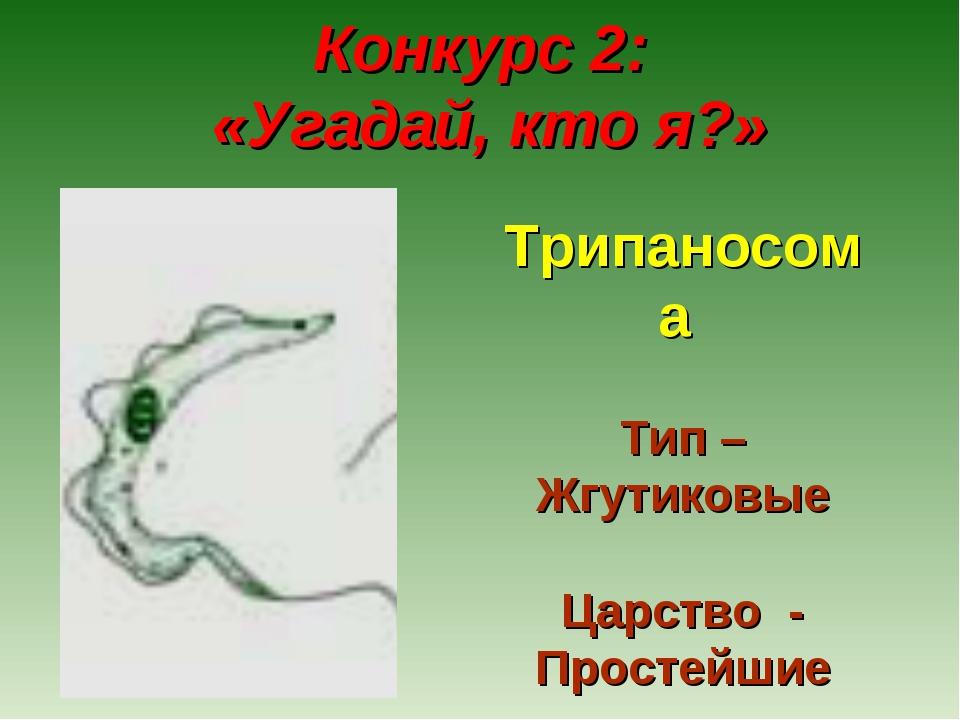 Конкурс 2: «Угадай, кто я?» Трипаносома Тип – Жгутиковые Царство - Простейшие