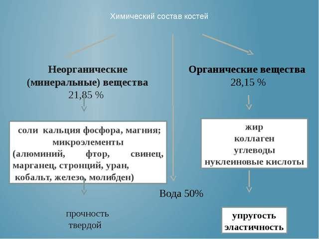 Химический состав костей Неорганические (минеральные) вещества 21,85 % Органи...