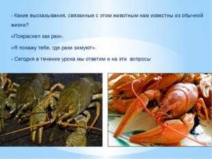 - Какие высказывания, связанные с этим животным нам известны из обычной жизни