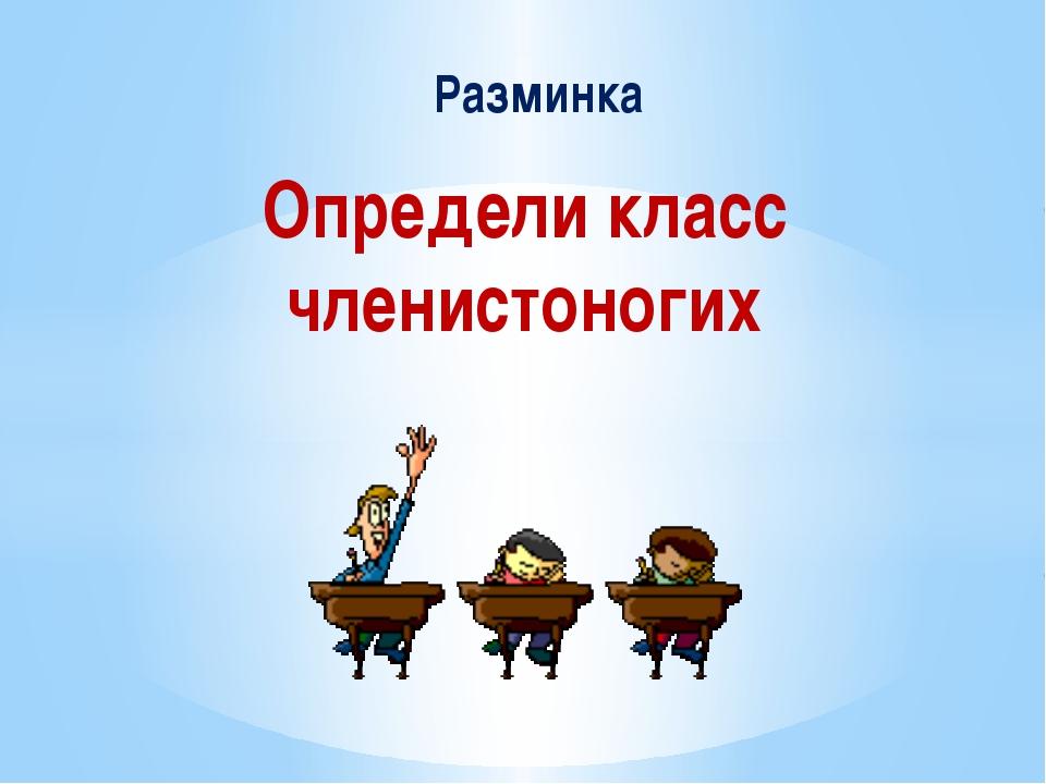 Определи класс членистоногих Разминка