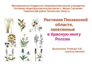 Растения Пензенской области, занесенные в Красную книгу России Муниципальное