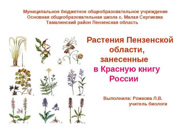 Растения Пензенской области, занесенные в Красную книгу России Муниципальное...