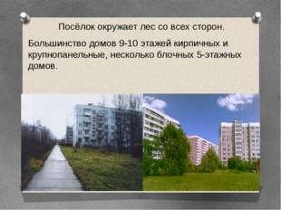 Посёлок окружает лес со всех сторон. Большинство домов 9-10 этажей кирпичных