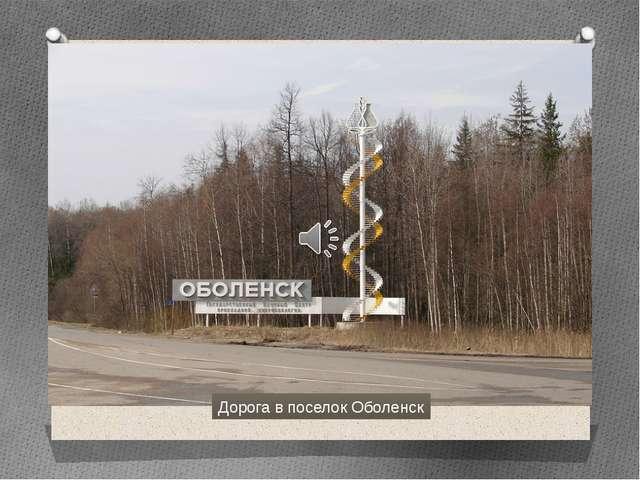Дорога в поселок Оболенск