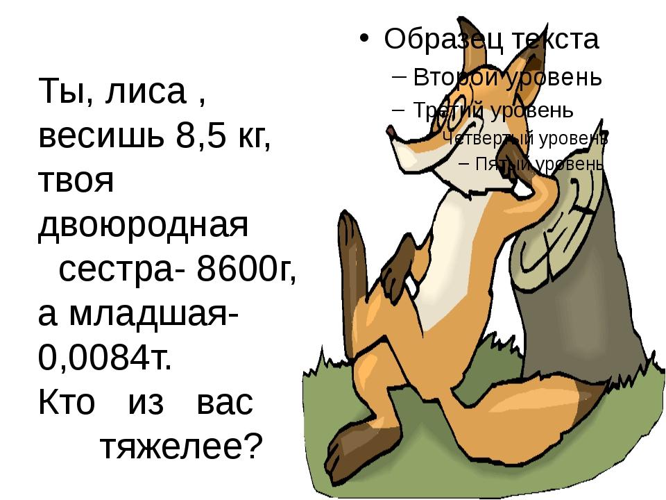 Ты, лиса , весишь 8,5 кг, твоя двоюродная сестра- 8600г, а младшая- 0,0084т....