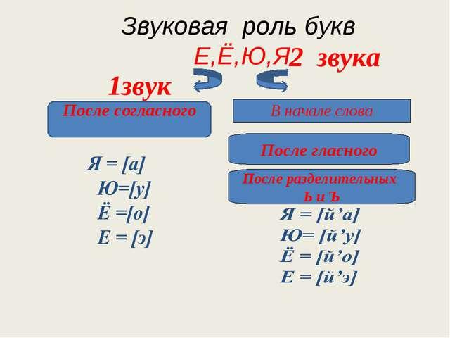 Звуковая роль букв Е,Ё,Ю,Я 1звук 2 звука В начале слова После согласного Пос...