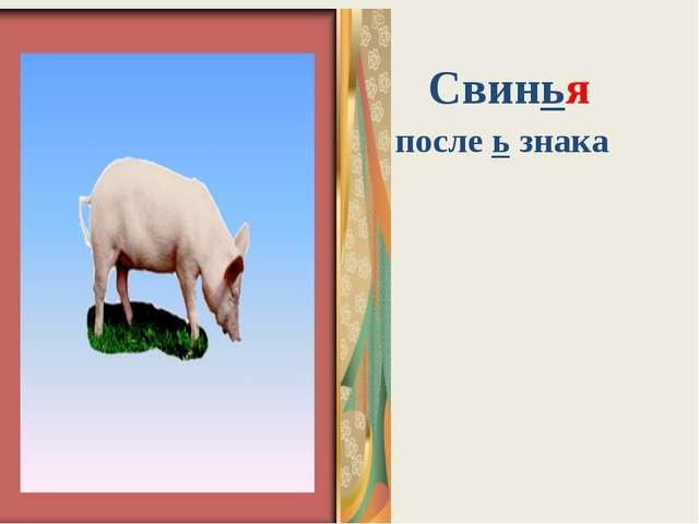 Юбка Свинья после ь знака