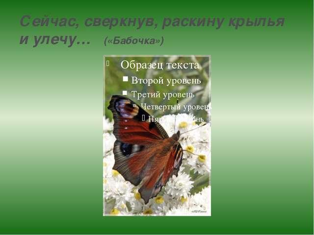 Сейчас, сверкнув, раскину крылья и улечу… («Бабочка»)