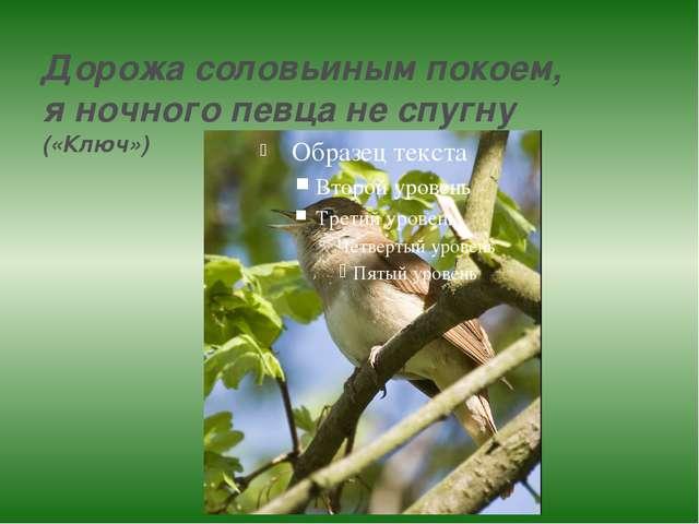 Дорожа соловьиным покоем, я ночного певца не спугну («Ключ»)