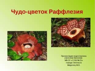 Чудо-цветок Раффлезия Презентация подготовлена учителем биологии МБОУ «СОШ №