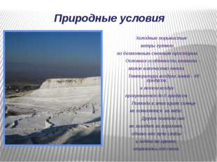 Холодные порывистые ветры гуляют по безмолвным снежным просторам. Основная о